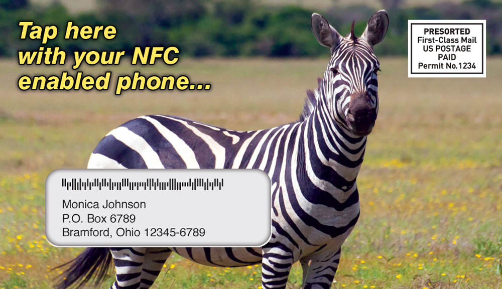 NFC Zebra Envelope for USPS Promotion
